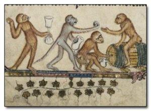 monkeysdrinkingbodleanms