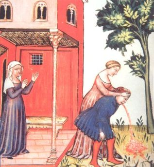 vomit-tacuinum-sanitatis-which-is-a-14th-century